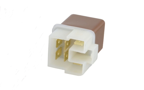 Large Brown Relay