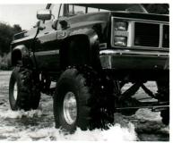 Bushwacker Chevrolet R10 Fender Flares