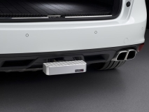 WeatherTech BumpStep Billet Step & Bumper Protection
