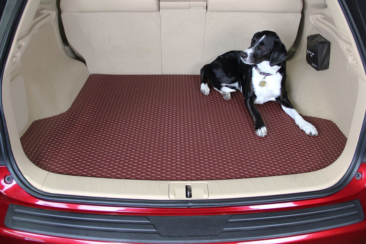 floor the mats mat new kennel in dog watch youtube floors