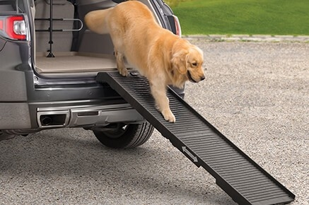 WeatherTech Pet Step